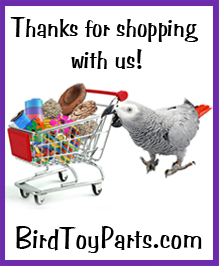 Thank You for Shopping at Bird Toy Parts