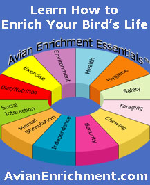 AvianEnrichment