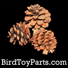 Natural Blue Pine Cones